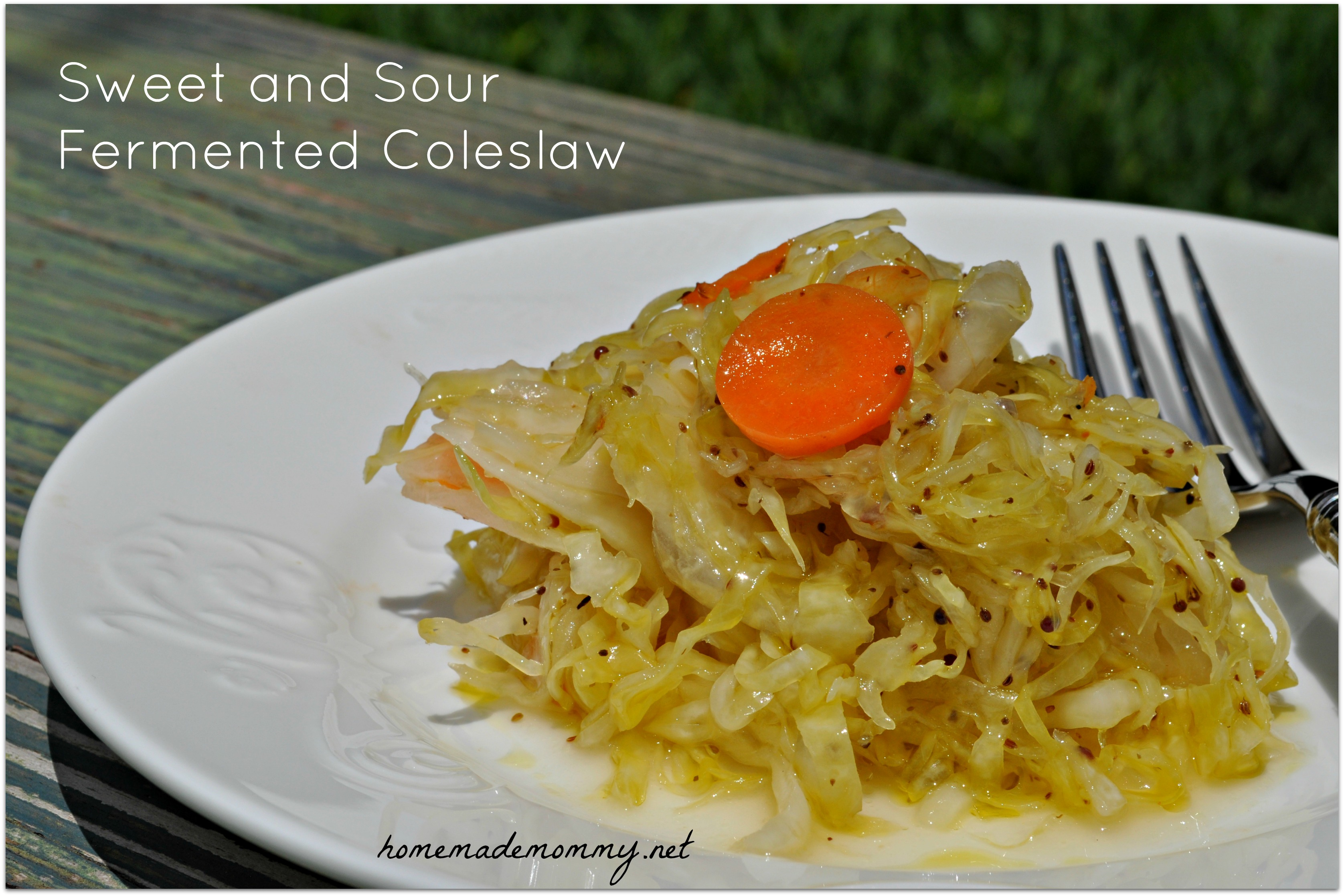 Sweet and Sour Fermented Coleslaw via Homemade Mommy