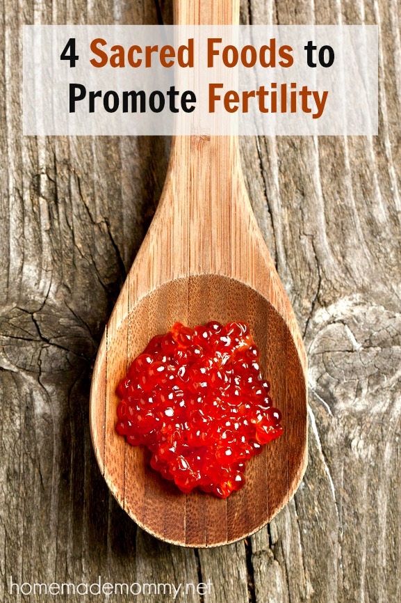 4 Sacred Foods to Promote Fertility